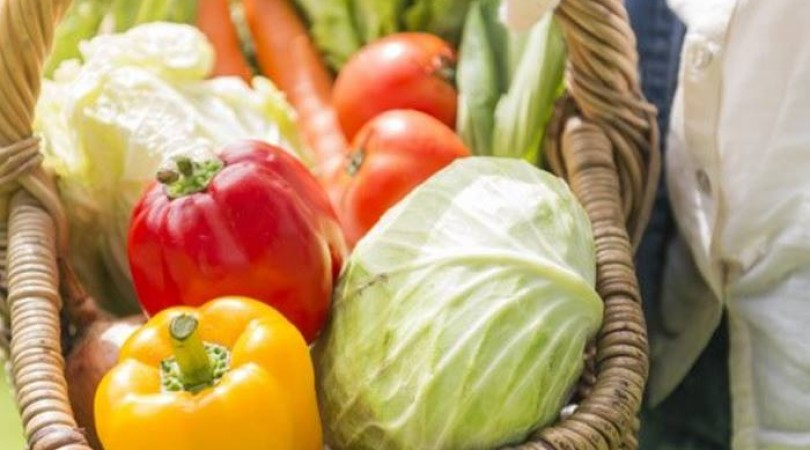 Köy' de Organik Ürünlerinizi Kendiniz Yetiştirin