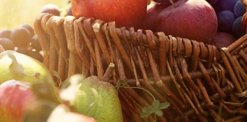 Köy'de Organik Beslenme